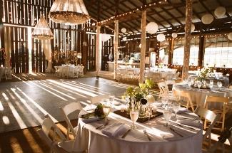 Homepage | Big Wedding Tiny BudgetBig Wedding Tiny Budget | Tips